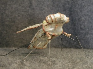 bug-front