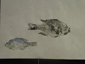 duo-fish
