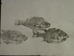 trio-fish
