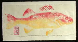 Tracie fish