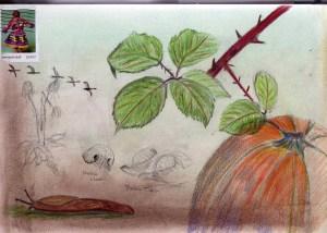 sketchcrawl11.13.050003