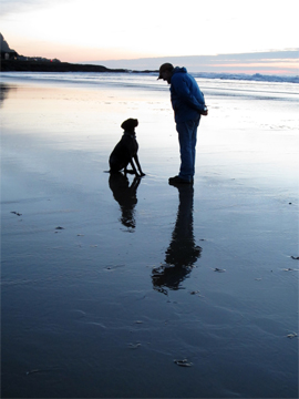 yachats-beach-dog-reflectio