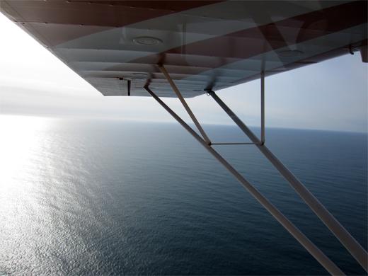 wing-n-water