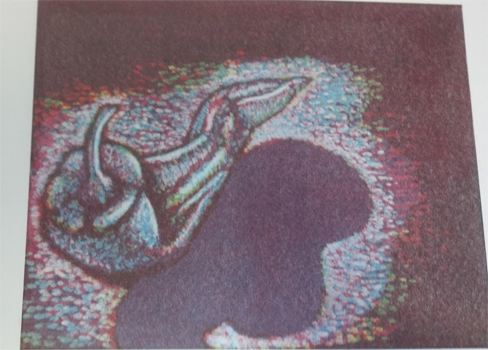 Finished image! Monotype pepper by Gale Everett