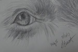 moby eye2