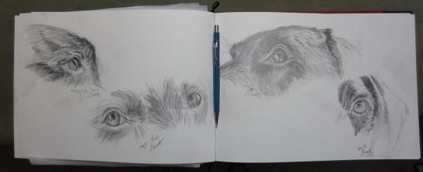 sketchbook page_geverett