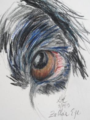 Zaffa Eye