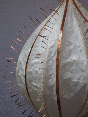 ctenophore side-GaleEverettStudio