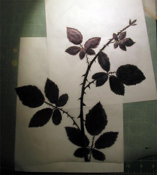 geverett_bberry-vine