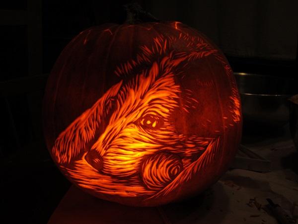 rogue pumpkin2