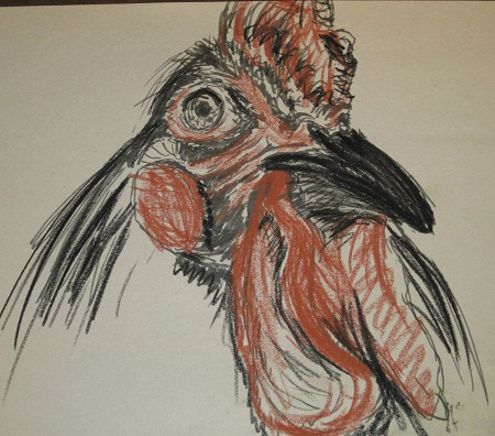 rooster2