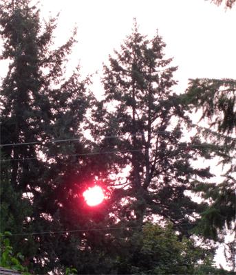 sunrise_August4_2014