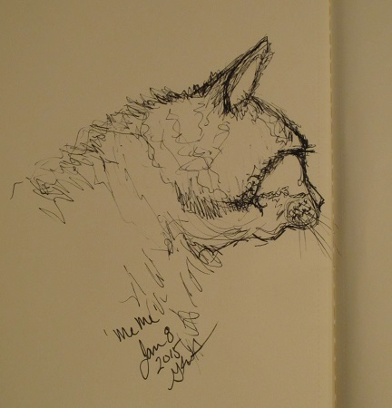 cat scribble_Jan8_2015_geverett