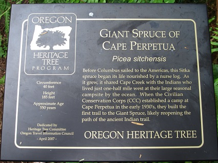 spruce sign2
