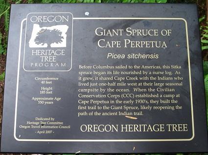 spruce sign2