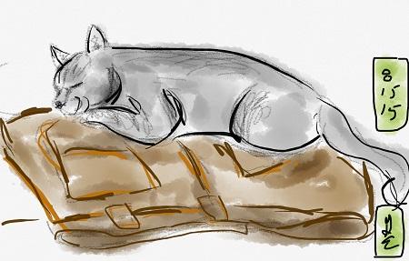 sleeping nigel