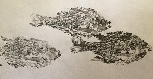 fishprint1_13april2016