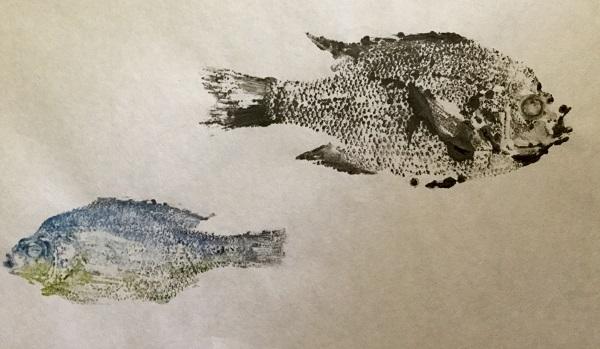 fishprint2_13april2016