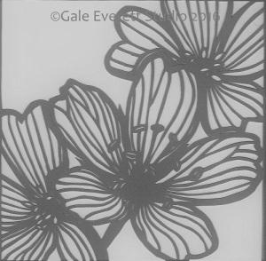 grey scale meadowfoam2_geverettstudio