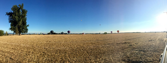 pano of balloons_august 2016