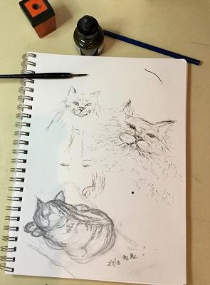 cat doodle feb 7 2018