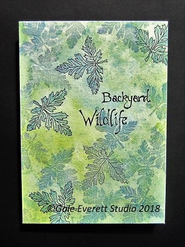 Backyard Wildlife Cover_geverettstudio2018