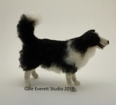 border collie_geverett studio 2019